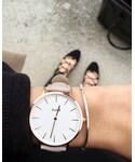 CLUSE | (腕時計)