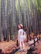 鎌倉  報国寺  にて☺︎  紫陽花見に行った時の。  竹林最高♩