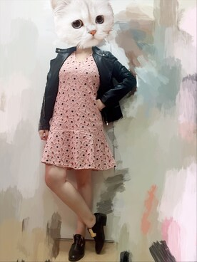 (Asos) using this Irene kkwan looks